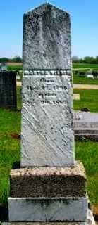 MITCHELL NELSON, MARTHA - Union County, Ohio | MARTHA MITCHELL NELSON - Ohio Gravestone Photos