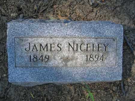 NICELEY, JAMES - Union County, Ohio | JAMES NICELEY - Ohio Gravestone Photos