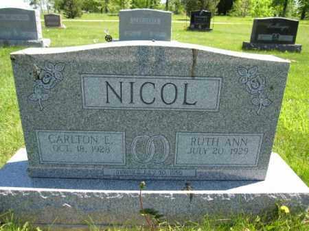 NICOL, RUTH ANN - Union County, Ohio | RUTH ANN NICOL - Ohio Gravestone Photos