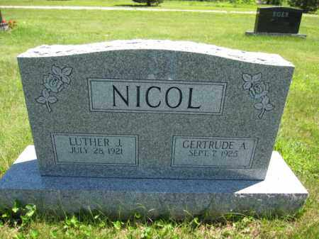 NICOL, LUTHER J. - Union County, Ohio | LUTHER J. NICOL - Ohio Gravestone Photos