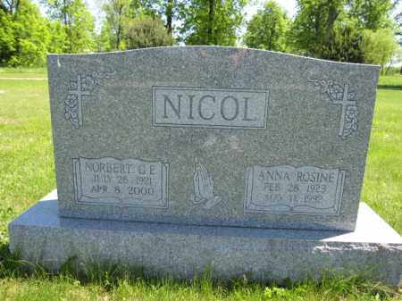 NICOL, ANNA ROSINE - Union County, Ohio | ANNA ROSINE NICOL - Ohio Gravestone Photos
