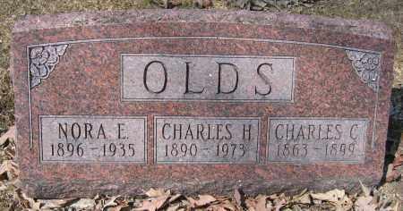 OLDS, NORA E. - Union County, Ohio | NORA E. OLDS - Ohio Gravestone Photos