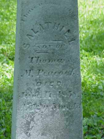 PEACOCK, SALATHIEL - Union County, Ohio   SALATHIEL PEACOCK - Ohio Gravestone Photos