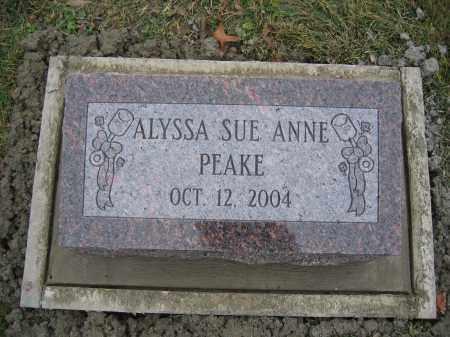 PEAKE, ALYSSA SUE ANNE - Union County, Ohio | ALYSSA SUE ANNE PEAKE - Ohio Gravestone Photos