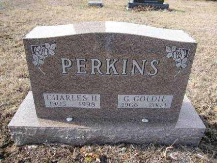 PERKINS, G. GOLDIE - Union County, Ohio | G. GOLDIE PERKINS - Ohio Gravestone Photos