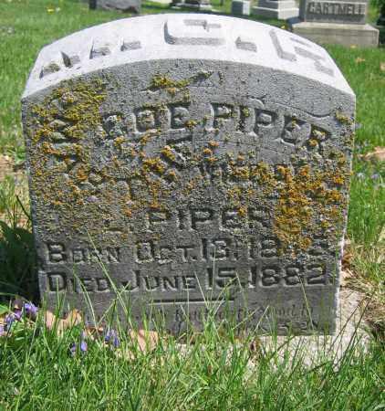 PIPER, MARTHA COE - Union County, Ohio | MARTHA COE PIPER - Ohio Gravestone Photos