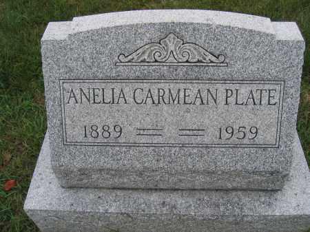 PLATE, ANELIA CARMEAN - Union County, Ohio   ANELIA CARMEAN PLATE - Ohio Gravestone Photos