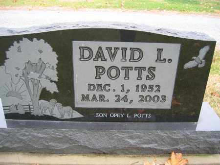 POTTS, DAVID L. - Union County, Ohio | DAVID L. POTTS - Ohio Gravestone Photos