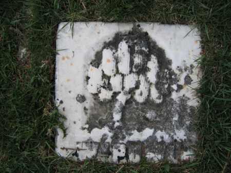 POWELL, WILLIAM - Union County, Ohio | WILLIAM POWELL - Ohio Gravestone Photos