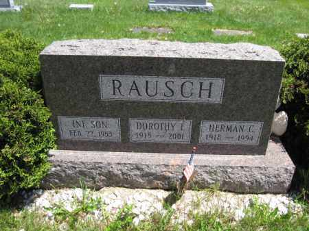 RAUSCH, INFANT SON - Union County, Ohio | INFANT SON RAUSCH - Ohio Gravestone Photos