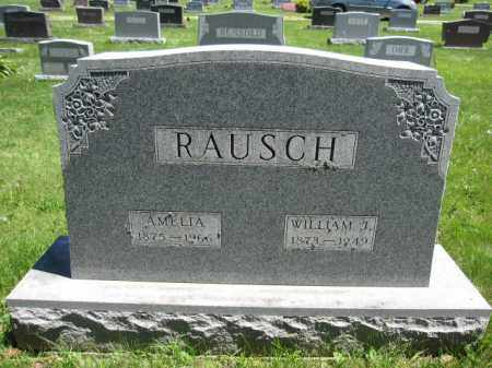 RAUSCH, AMELIA - Union County, Ohio | AMELIA RAUSCH - Ohio Gravestone Photos