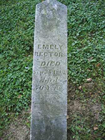 RECTOR, EMELY - Union County, Ohio | EMELY RECTOR - Ohio Gravestone Photos