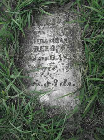 REED, DAVID - Union County, Ohio | DAVID REED - Ohio Gravestone Photos