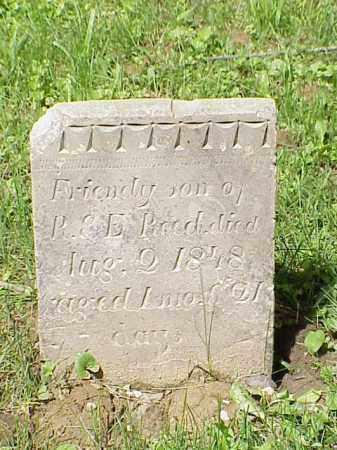 REED, FRIENDY - Union County, Ohio | FRIENDY REED - Ohio Gravestone Photos