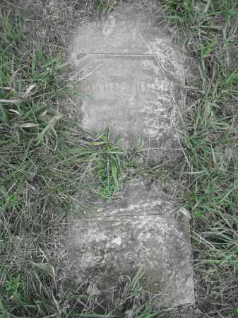 REED, GEORGE - Union County, Ohio   GEORGE REED - Ohio Gravestone Photos
