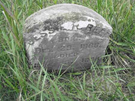 REED, JESSIE R. - Union County, Ohio   JESSIE R. REED - Ohio Gravestone Photos