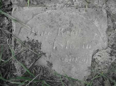 REED, JANE - Union County, Ohio | JANE REED - Ohio Gravestone Photos