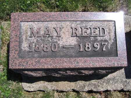 REED, MARY - Union County, Ohio | MARY REED - Ohio Gravestone Photos