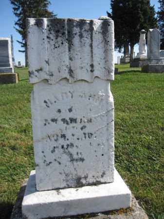 RICKMAN, MARY ANN - Union County, Ohio | MARY ANN RICKMAN - Ohio Gravestone Photos