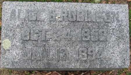 ROBINSON, ALICE B. - Union County, Ohio   ALICE B. ROBINSON - Ohio Gravestone Photos