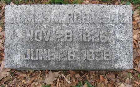 ROBINSON, JAMES W. - Union County, Ohio | JAMES W. ROBINSON - Ohio Gravestone Photos