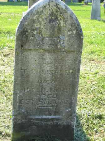 SALISBURY, ELIZABETH - Union County, Ohio | ELIZABETH SALISBURY - Ohio Gravestone Photos