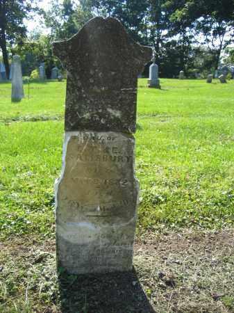SALISBURY, LUCINDA - Union County, Ohio | LUCINDA SALISBURY - Ohio Gravestone Photos