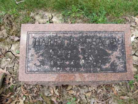 SCHALIP, HARRY P. - Union County, Ohio | HARRY P. SCHALIP - Ohio Gravestone Photos