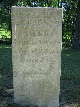 SCOTT, FRANCES P. - Union County, Ohio | FRANCES P. SCOTT - Ohio Gravestone Photos