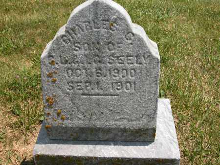 SEELY, CHARLES G. - Union County, Ohio | CHARLES G. SEELY - Ohio Gravestone Photos