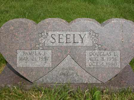 SEELY, PAMELA J. - Union County, Ohio | PAMELA J. SEELY - Ohio Gravestone Photos