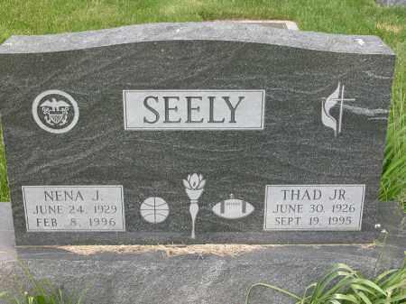 SEELY, NENA J. - Union County, Ohio   NENA J. SEELY - Ohio Gravestone Photos