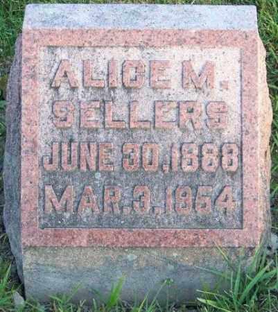 SELLERS, ALICE M - Union County, Ohio | ALICE M SELLERS - Ohio Gravestone Photos