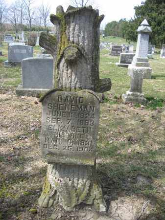 SHENEMAN, ELIZABETH - Union County, Ohio | ELIZABETH SHENEMAN - Ohio Gravestone Photos