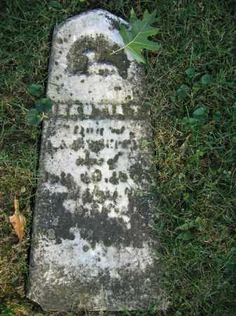 SHEPPARD, HECSTIA T. - Union County, Ohio | HECSTIA T. SHEPPARD - Ohio Gravestone Photos