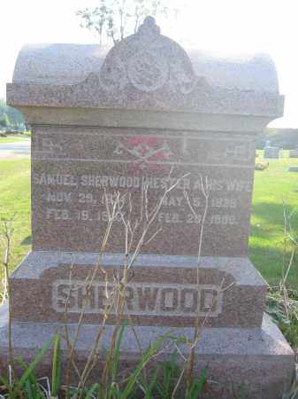 SHERWOOD, HESTER - Union County, Ohio | HESTER SHERWOOD - Ohio Gravestone Photos