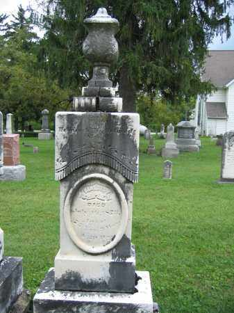 SHIPLEY, BENEDICT - Union County, Ohio   BENEDICT SHIPLEY - Ohio Gravestone Photos