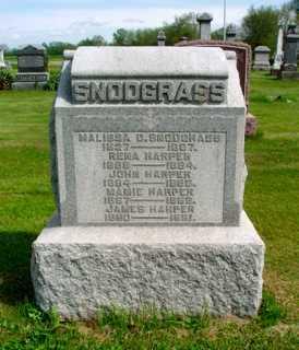 SNODGRASS, MALISSA D. - Union County, Ohio | MALISSA D. SNODGRASS - Ohio Gravestone Photos