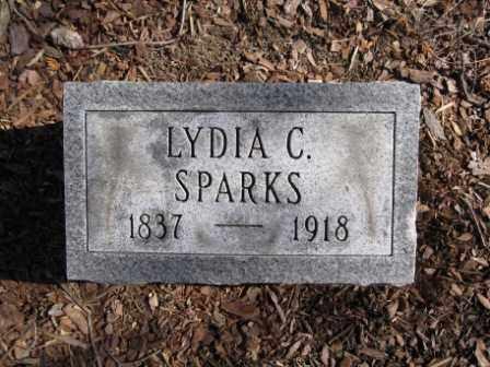 SPARKS, LYDIA C. - Union County, Ohio   LYDIA C. SPARKS - Ohio Gravestone Photos