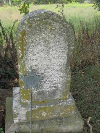 SPARKS, WILLIAM - Union County, Ohio | WILLIAM SPARKS - Ohio Gravestone Photos