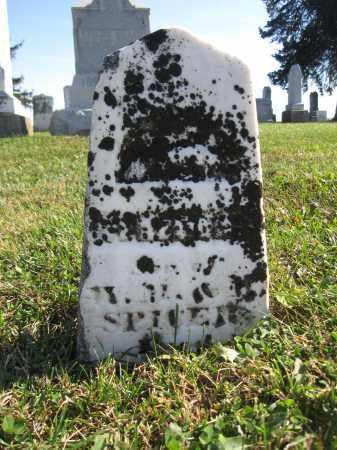 SPICER, JONATHAN FREEMONT - Union County, Ohio | JONATHAN FREEMONT SPICER - Ohio Gravestone Photos