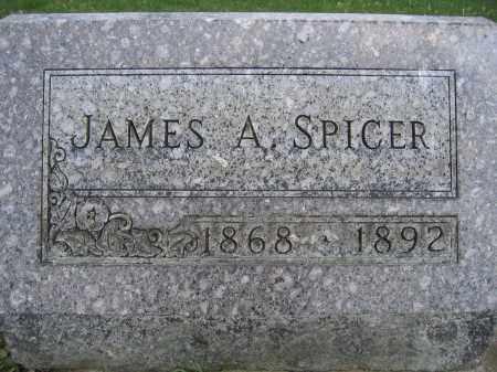 SPICER, JAMES A - Union County, Ohio | JAMES A SPICER - Ohio Gravestone Photos