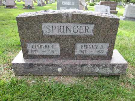 SPRINGER, BERNICE D. - Union County, Ohio | BERNICE D. SPRINGER - Ohio Gravestone Photos