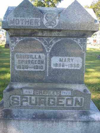 SPURGEON, DRUSILLA - Union County, Ohio | DRUSILLA SPURGEON - Ohio Gravestone Photos