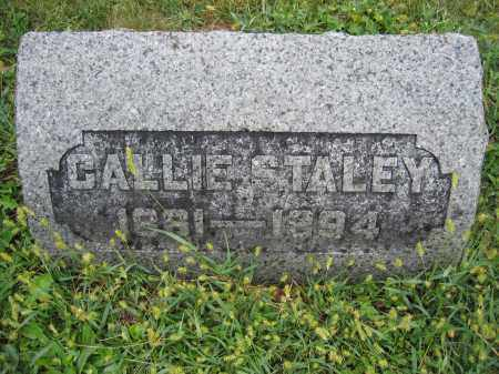 STALEY, CALLIE - Union County, Ohio | CALLIE STALEY - Ohio Gravestone Photos