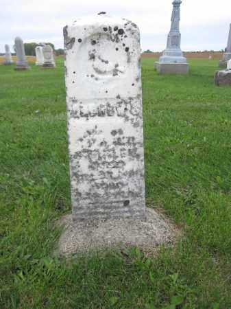 STANLEY, ANDREW S. - Union County, Ohio | ANDREW S. STANLEY - Ohio Gravestone Photos