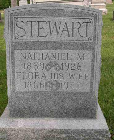 STEWART, NATHANIEL M. - Union County, Ohio | NATHANIEL M. STEWART - Ohio Gravestone Photos