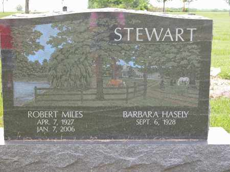 STEWART, BARBARA HASELY - Union County, Ohio | BARBARA HASELY STEWART - Ohio Gravestone Photos