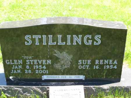 STILLINGS, SUE RENEA - Union County, Ohio | SUE RENEA STILLINGS - Ohio Gravestone Photos