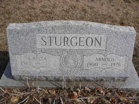 STURGEON, ARNOLD - Union County, Ohio | ARNOLD STURGEON - Ohio Gravestone Photos
